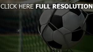 netz ball fußball