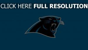 carolina panthers logo amerikanischer fußball