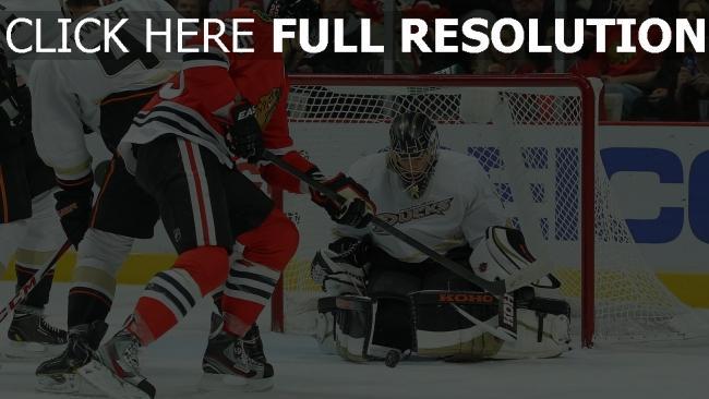 hd hintergrundbilder chicago blackhawks tormann hockey anaheim ducks