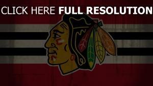 logo chicago blackhawks blackhawks