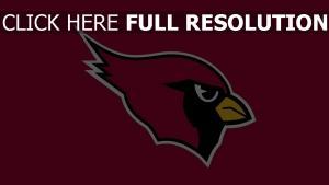 fußballverein sportmannschaft arizona cardinals