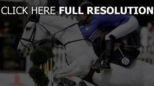 reiter sport mädel pferd