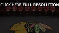 amerika hockey hockey club chicago blackhawks
