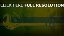 fußball weltmeisterschaft cup fifa brasilien