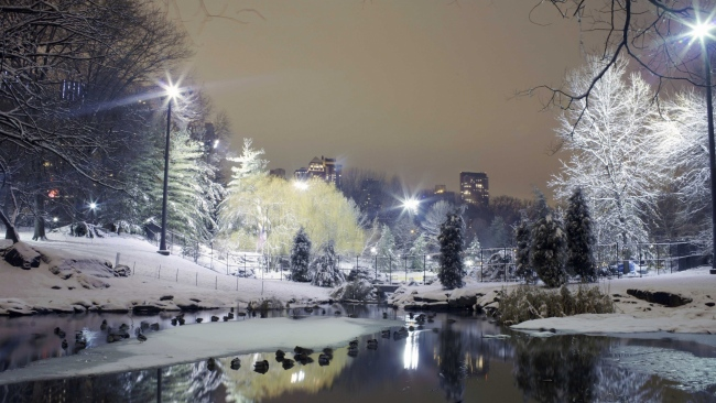 hd hintergrundbilder park winter schnee wasser licht stadt