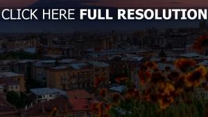 haus stadt yerevan armenien
