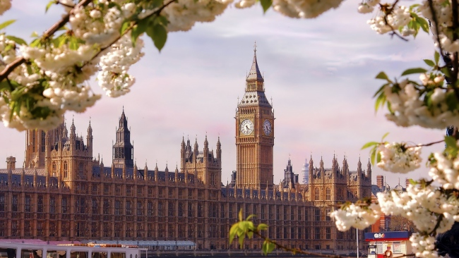 hd hintergrundbilder blüte frühling häuser des parlaments london