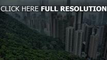 gebäude bäume wolkenkratzer hongkong