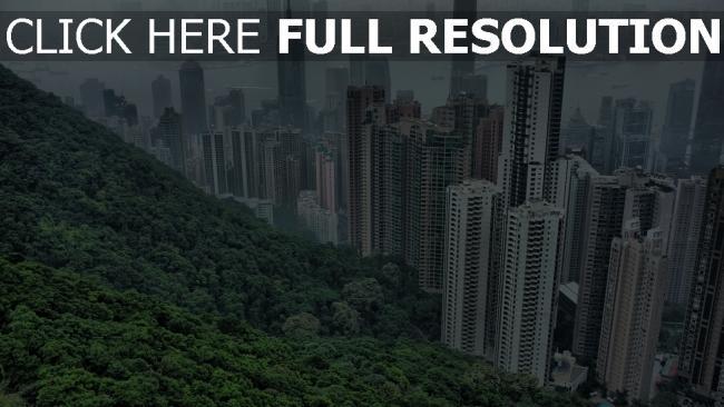hd hintergrundbilder gebäude bäume wolkenkratzer hongkong