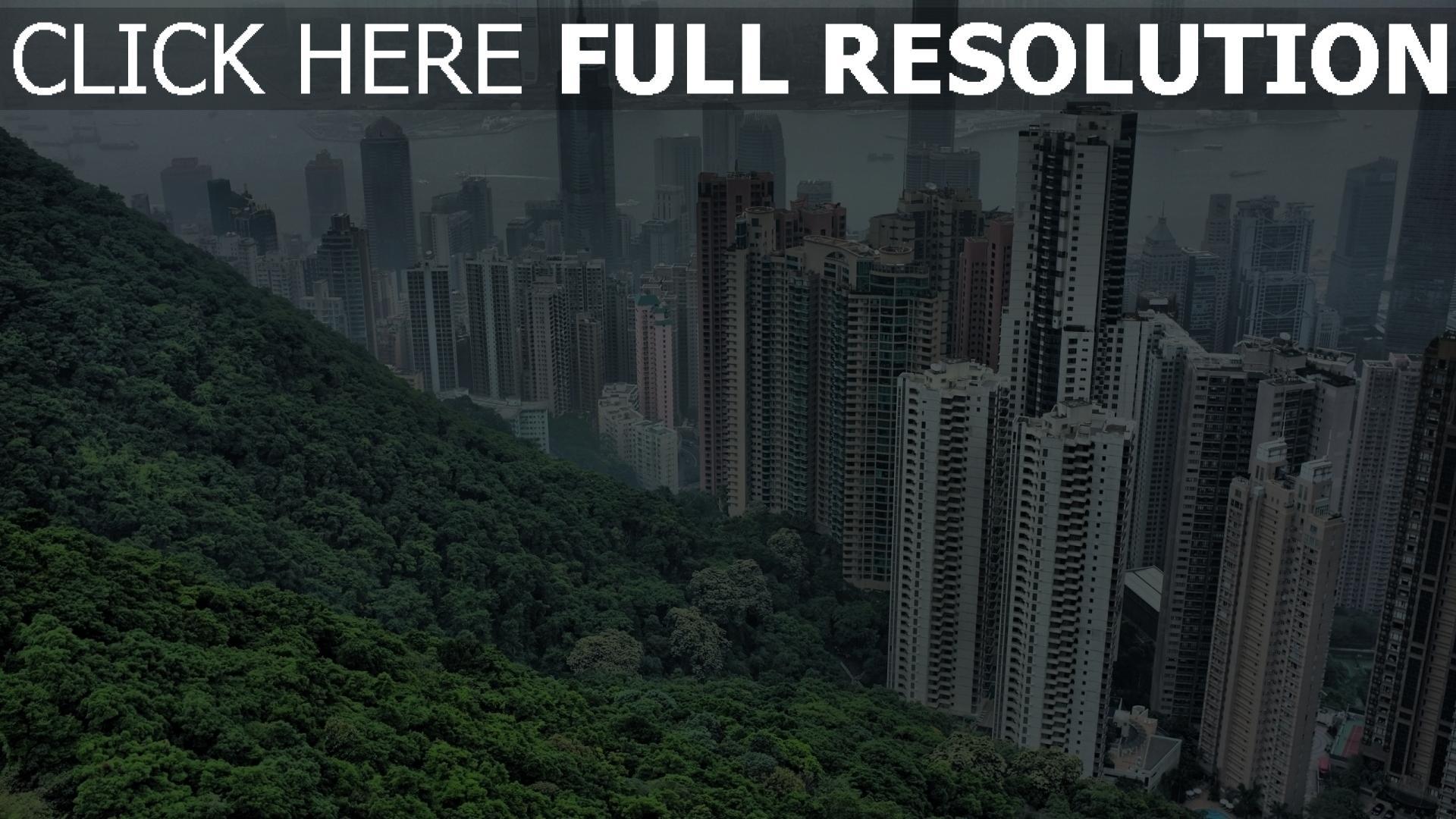 hd hintergrundbilder gebäude bäume wolkenkratzer hongkong 1920x1080