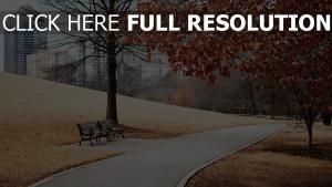landschaft laub pfad gras bänke herbst park stadt