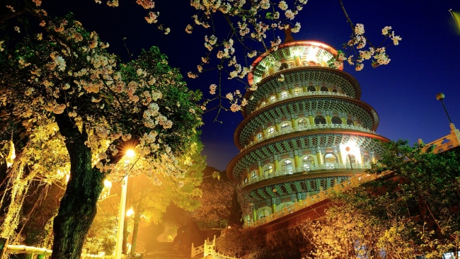 hd hintergrundbilder china gebäude beleuchtung abend baum blüte