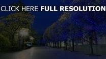 natur park abend stadt bäume