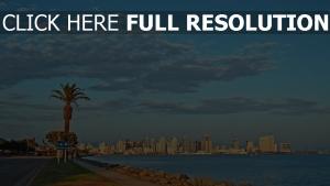 wolkenkratzer usa palmen kalifornien strand san diego