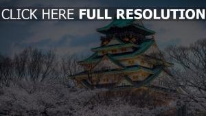 japan kirsche himmel feder tempel stadt farbe