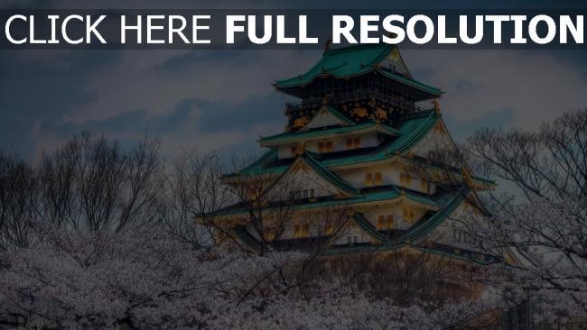 hd hintergrundbilder japan kirsche himmel feder tempel stadt farbe