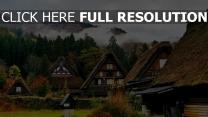 häuser berge shirakawa bäume japan