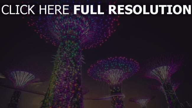 hd hintergrundbilder beleuchtung dekoration künstliche bäume stadt singapur