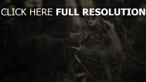 katze grau pelz liegend gras