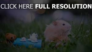 flaumig spielzeug gras hamster
